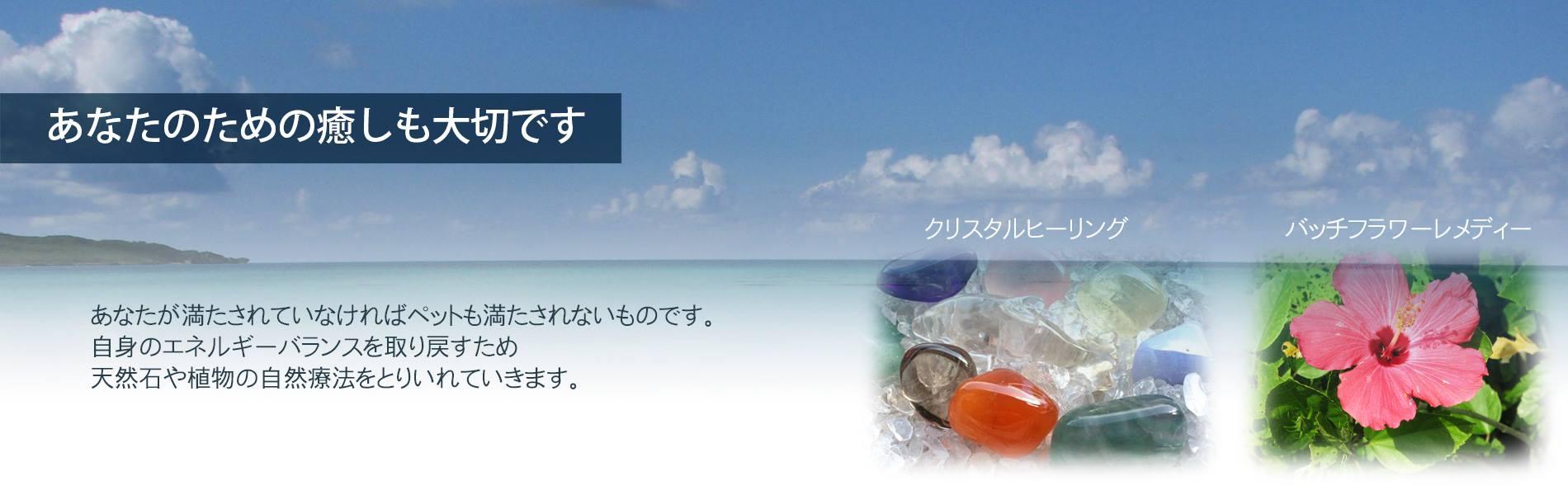 富山のアニマルヒーリングサロンみなみかぜ